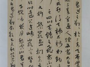 范志翔  三等奖